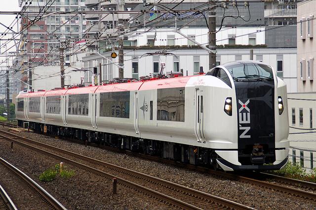 The Narita Express train, better known as NEX.