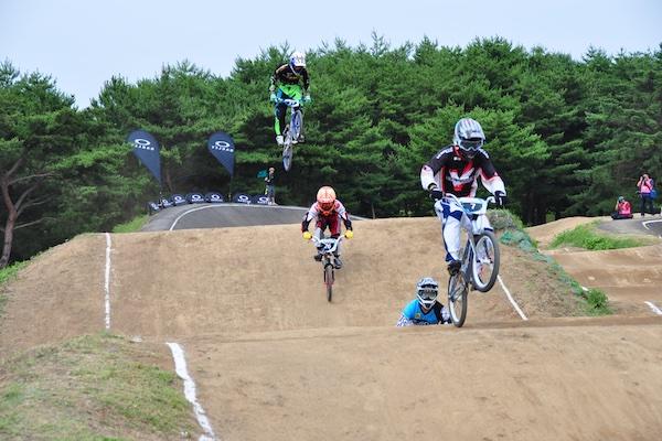 Image is taken from Hitachi Seaside Park website